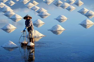 Ngắm 'mùa muối Việt' tuyệt đẹp trên National Geographic