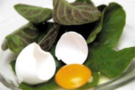 8 món ngon từ trứng gà giúp chữa bệnh còn tốt hơn cả thuốc